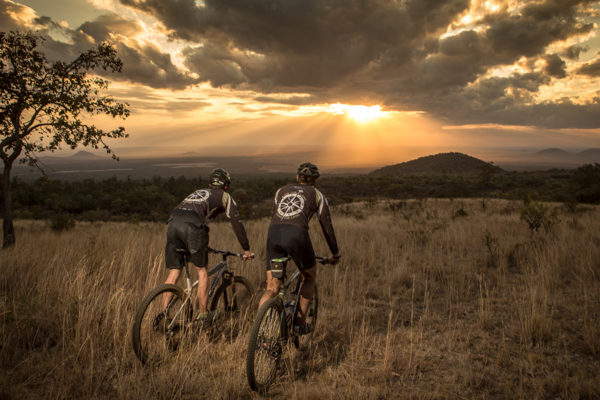 Ride for Lions an initiative of Great Plains, helps to raise funds to help protect such a magnificent animal.
