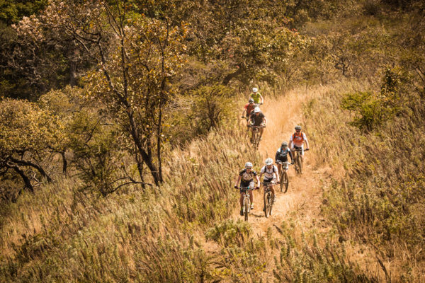 A group of riders making their way up a steep hill, a long enjoyable ride to help save and protect lions.
