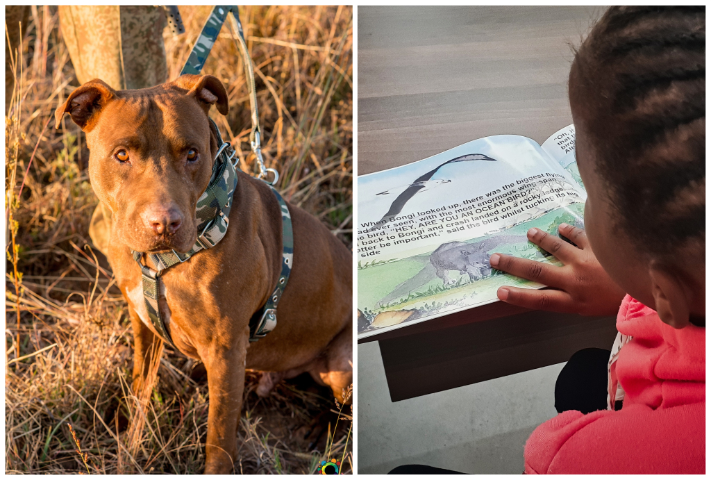 PAWS ON THE GROUND: NEWSLETTER AUGUST 2020